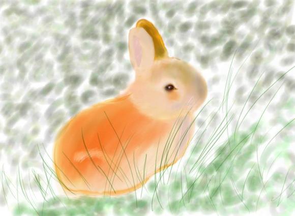 http://aucune-idee.cowblog.fr/images/lapereau.jpg